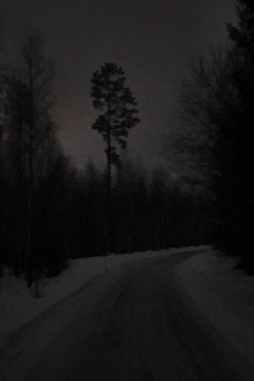 Vinterkveld.jpg