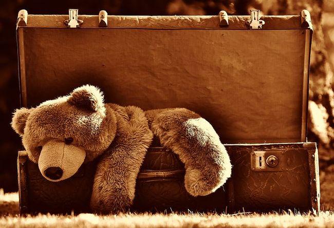 luggage-1799224__480