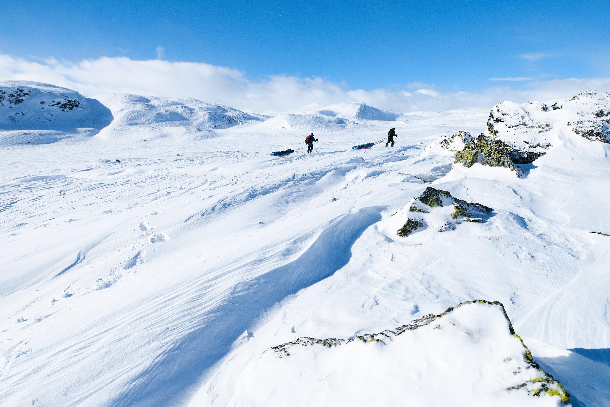 Vill_natur_Foto_Xavier Koenig_Xtremeidfjord.jpg