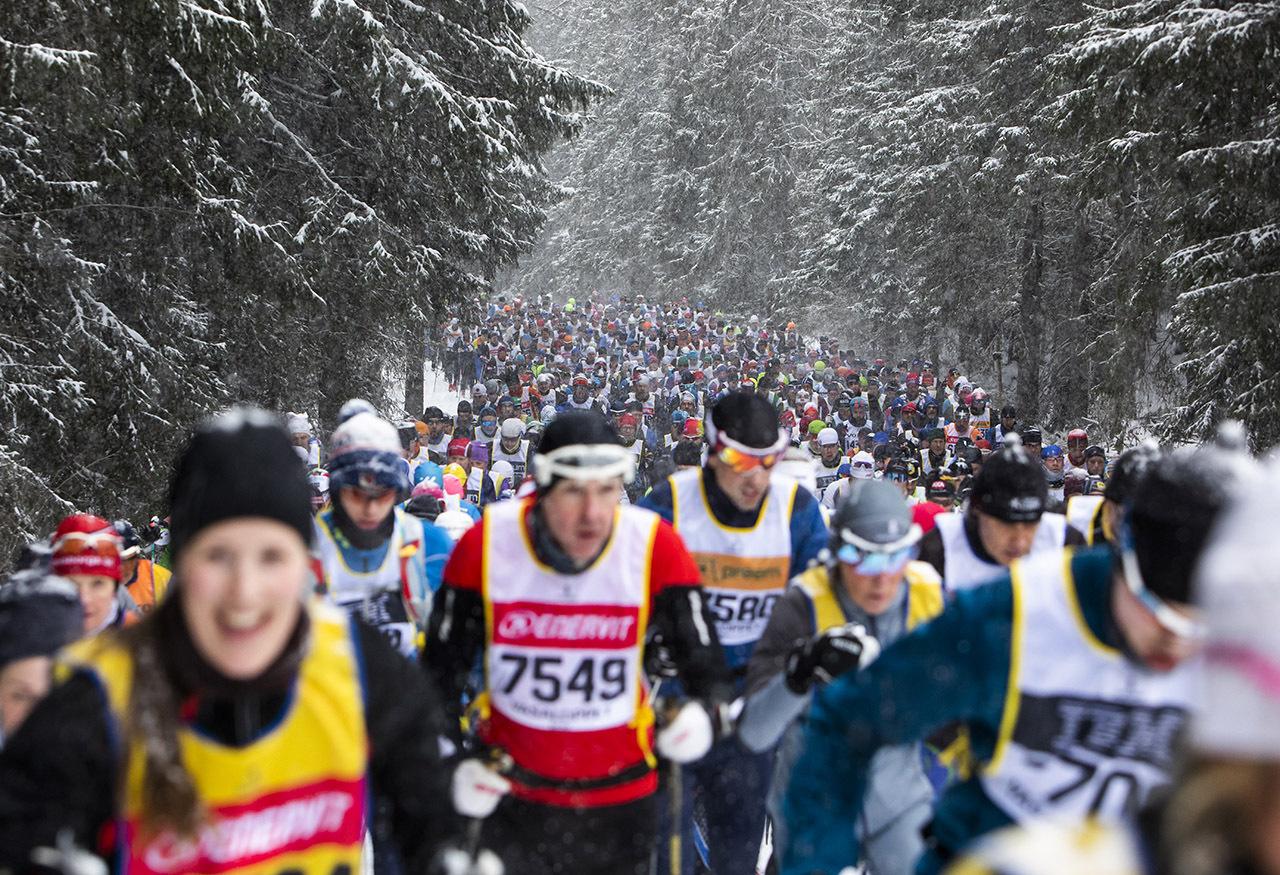 Vasaloppet-27_skog.jpg