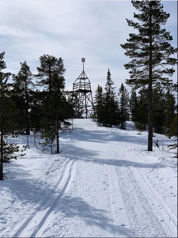 Skispor_foto_Kristen_Aaby.jpg