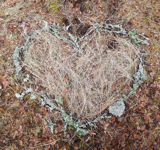 Hjerte laget av Margit Lyngvær (snart 7 år) fra Orkanger
