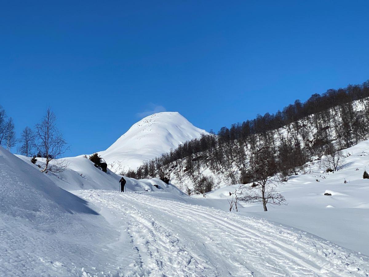 Skiløpar på veg mot Anestølen
