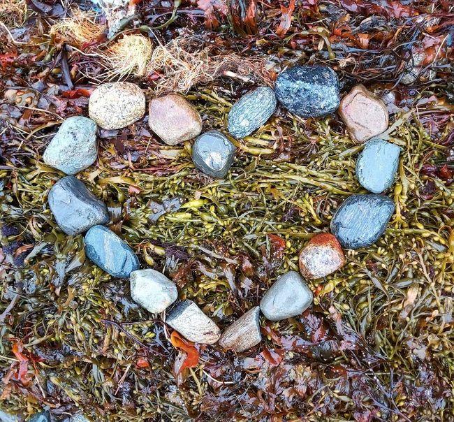 Hjerter av stein