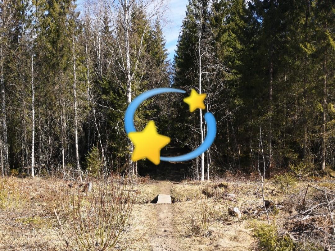 Stjernecup-blde.jpg