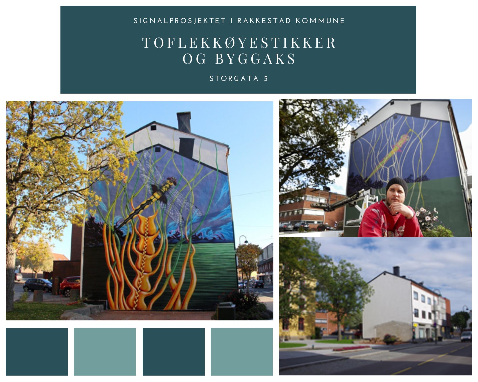 Toflekkøyestikker og byggaks - Storgata 5 - Signalprosjektet i Rakkestad kommune.png