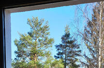 Det blir ikkje det same å sjå skogen og den blå himmelen gjennom glaset, som å komma seg ut, springe av garde og kjenne sola varme. (Foto: Runar Gilberg)