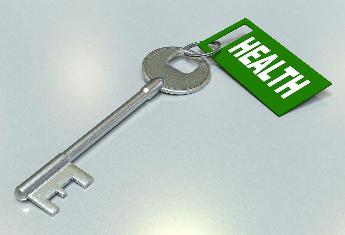 Et velfungerende immunforsvar kan være en nøkkel til god helse. (Foto: Arek Socha fra Pixabay)