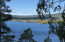 Maridalsvannet i Oslo