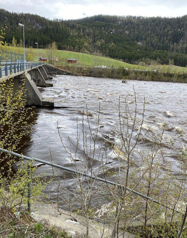 Stor vannføring i Bjørsetdammen