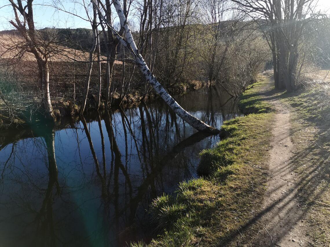 Naturbilde fra Karin Mathilde Morstad sin langtur i Gran