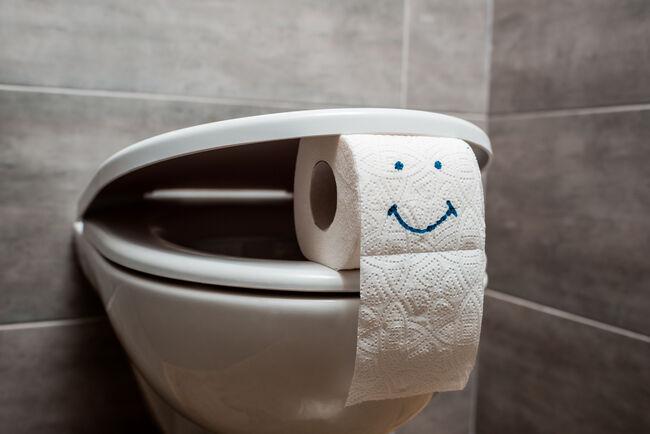 Toalett og toalettrull