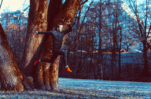 Spenst i steget: Det er mange måter å løpe på. Ikke alle er like energiøkonomiske. (Foto: Oda Hveem)