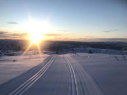 Bortelid skispor_comp