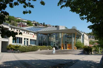 Sogndal kulturhus - fasade