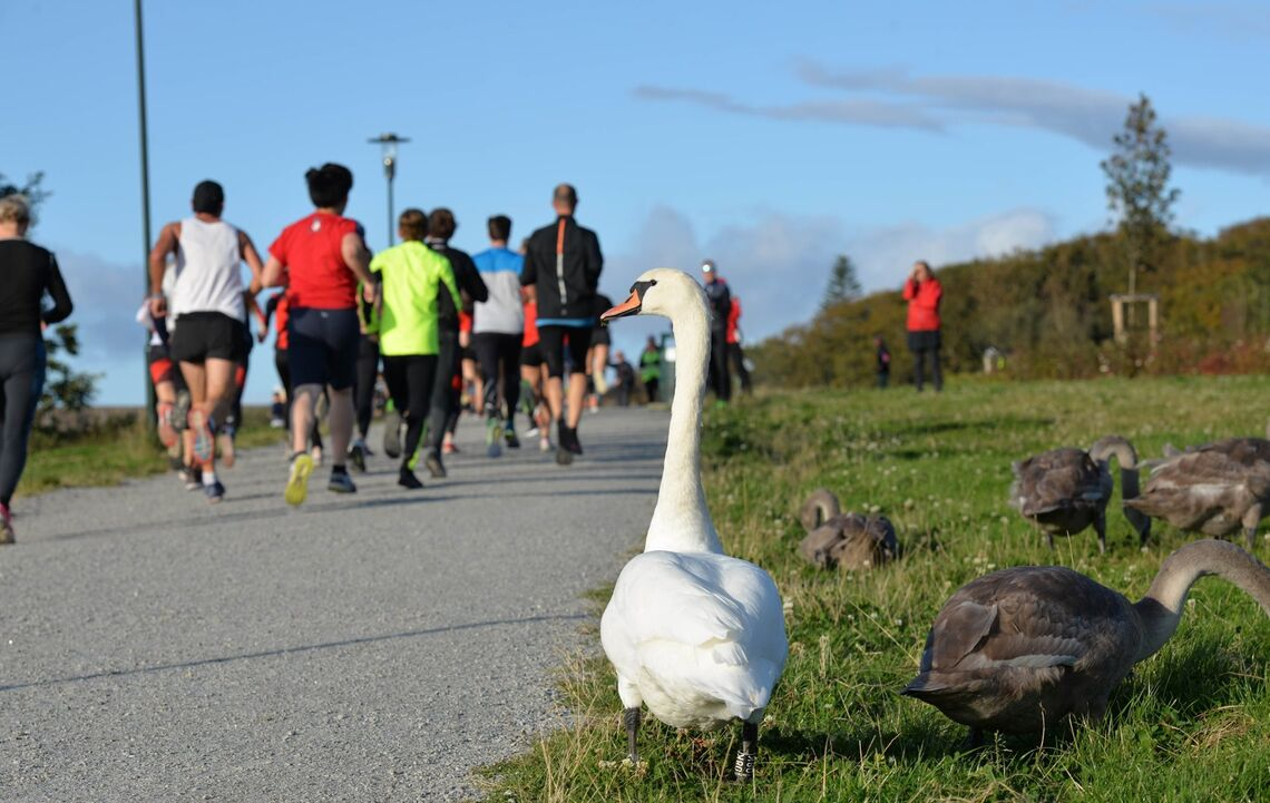 Løpere og tilskuere i fjorårets løp rundt Mosvannet. (Foto: Arrangøren)