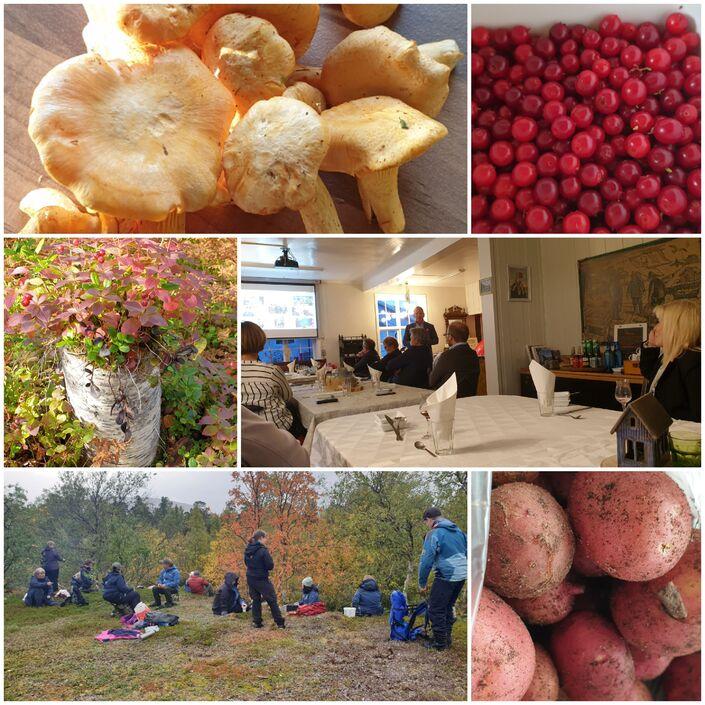 Nypoteter fra hyttenabo, kantaerller, tyttebær, kulturminnetur og fylkesstyre KS middag på Antikstore :)