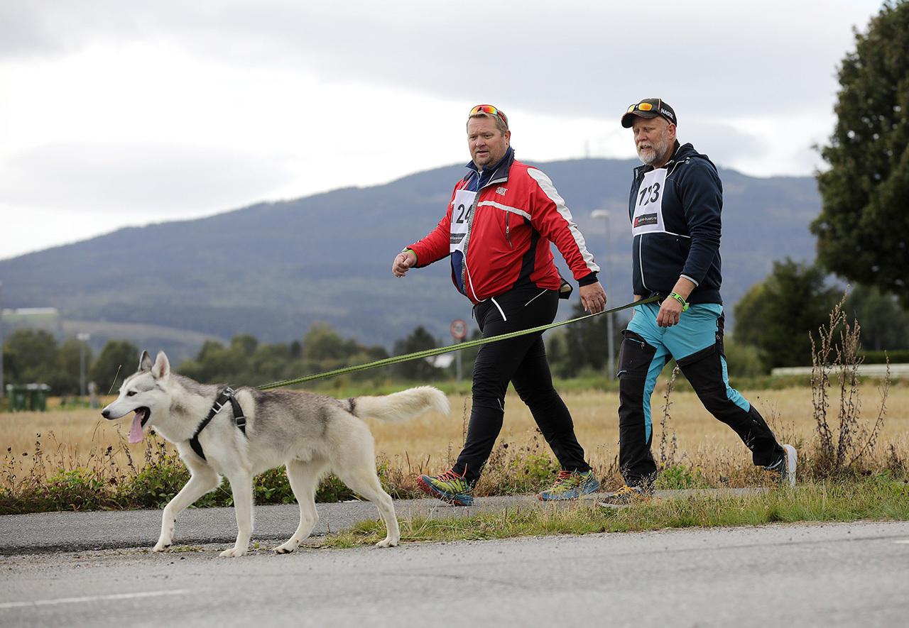 Luftet hunden - Jan Rune Hundedrahjelp.jpg