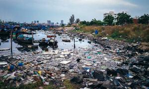 Et hav av muligheter - innsamlingsaksjon WWF 2020 - Foto Rafa Elias Getty Images