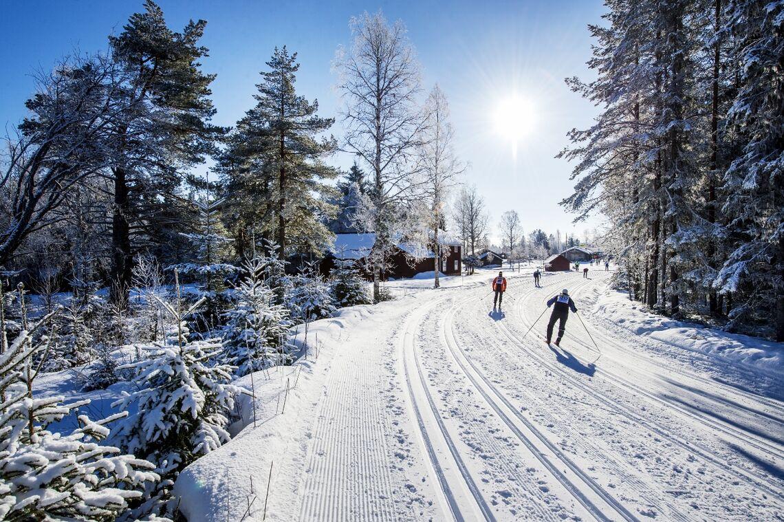 Det blir Vasalopp i disse løypene også i 2021, men bare eliten får gå selve rennet, de andre går Vasaåket (Foto: Vasaloppet/Ulf Palm)