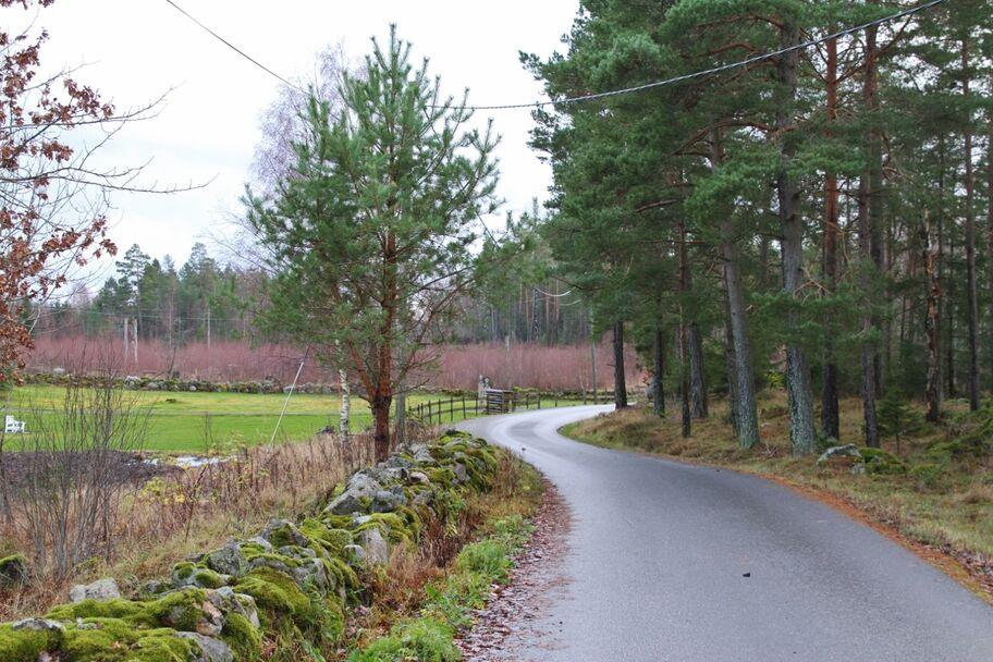 IMG_8804_Landeveien (1280x853)