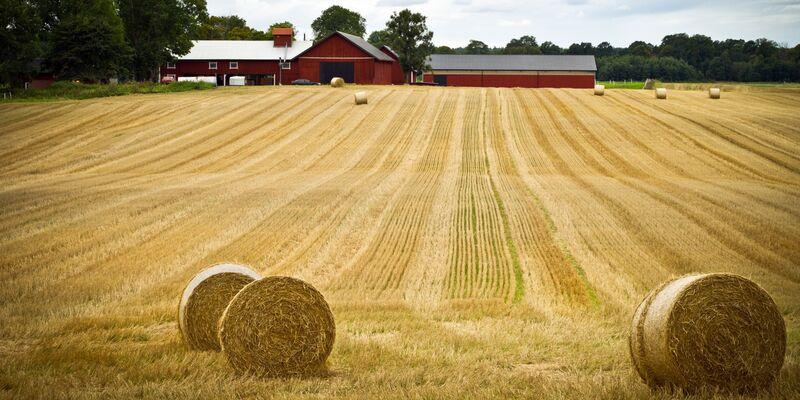 Illustrasjonsbilde av et gårdsbruk