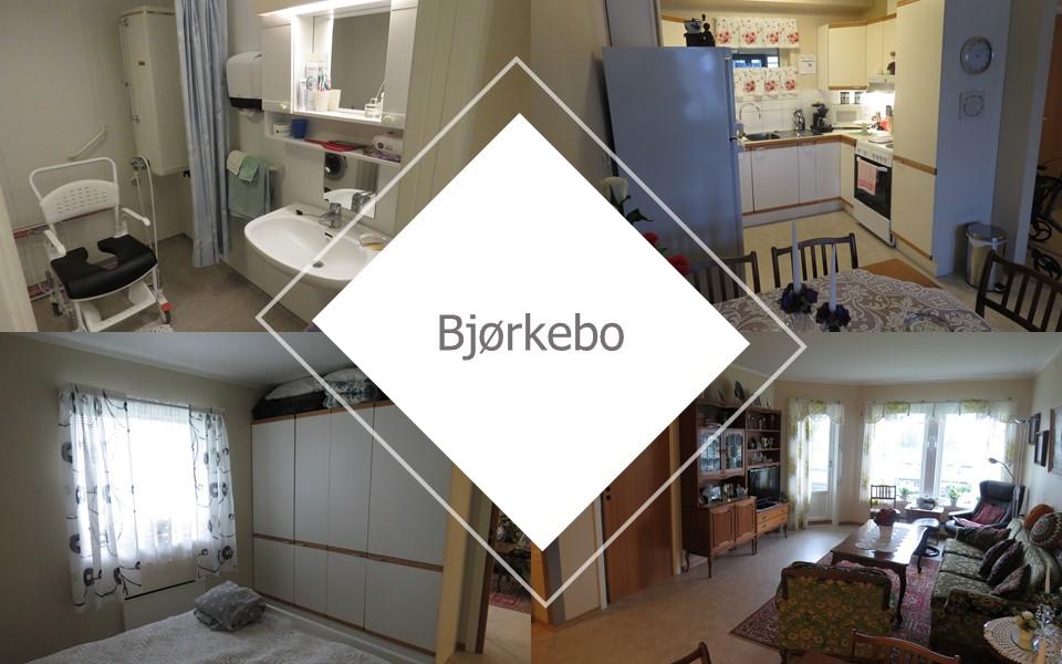 Omsorgsleieligheter Bjørkebo - Rakkestad kommune