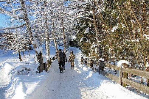 Vinter og snø - gå tur