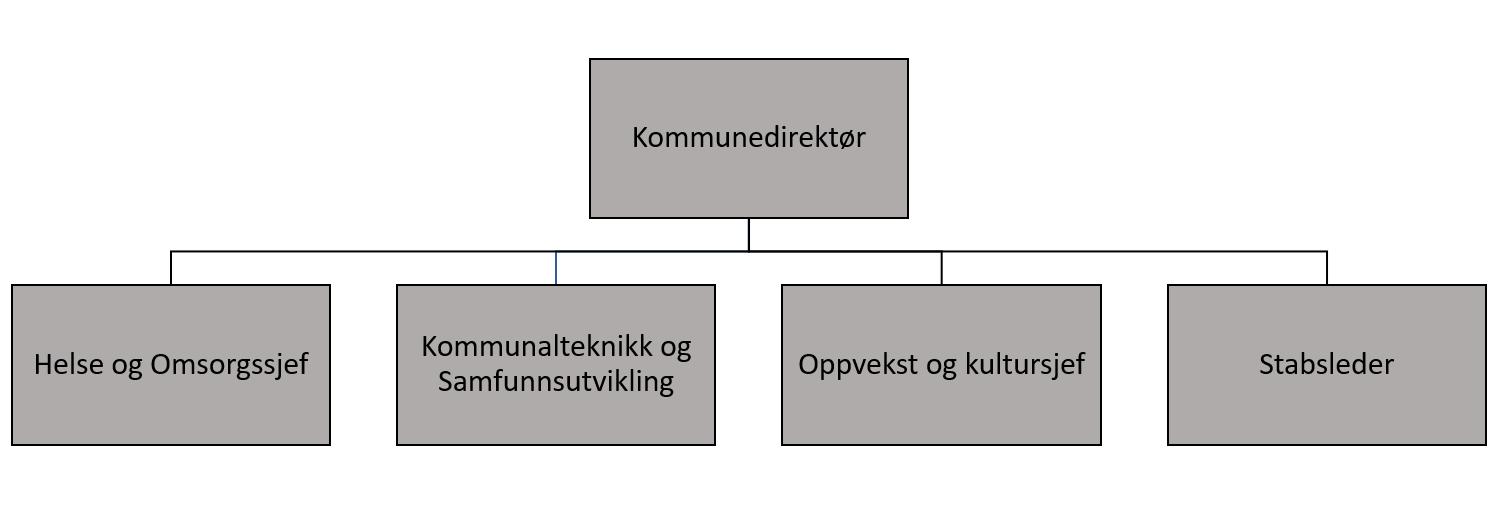 Organisasjonskart 2021.png