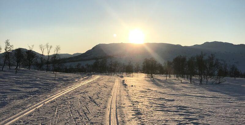 Skispor i solnedgang - Jill Åse Fredriksen