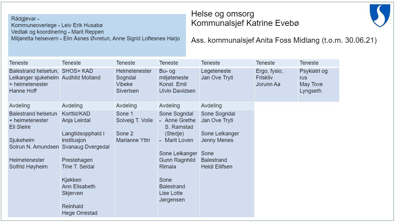 Illustrasjon organisasjonskart helse og omsorg