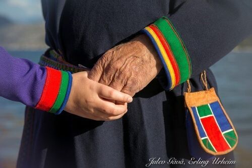 Bildet hentet fra artikkelen på www.statsforvalteren.no