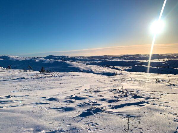 Vinter i fjellheimen i Åseral - Foto: Odd Helge Liestøl