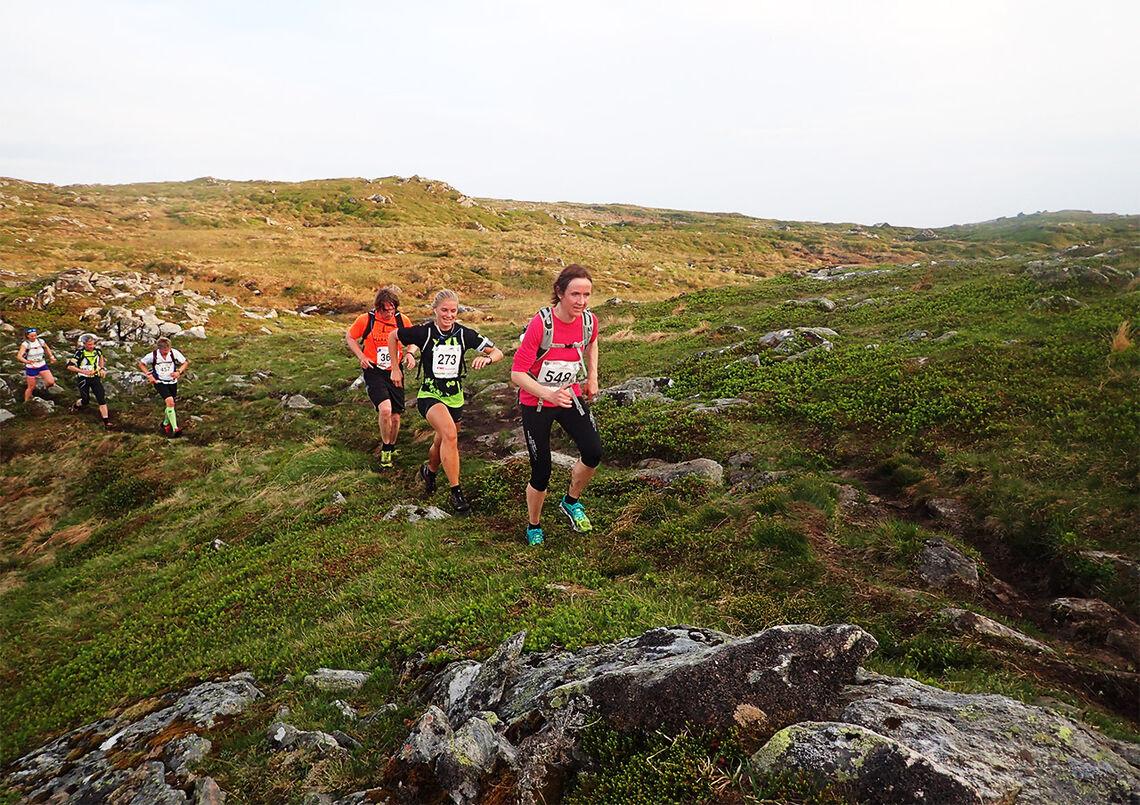 I Bergen Fjellmaraton får en testa seg både oppover, bortover og nedover. (Foto: Marianne Røhme)