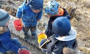 2-åringane i Notsete barnehage plukka bos.