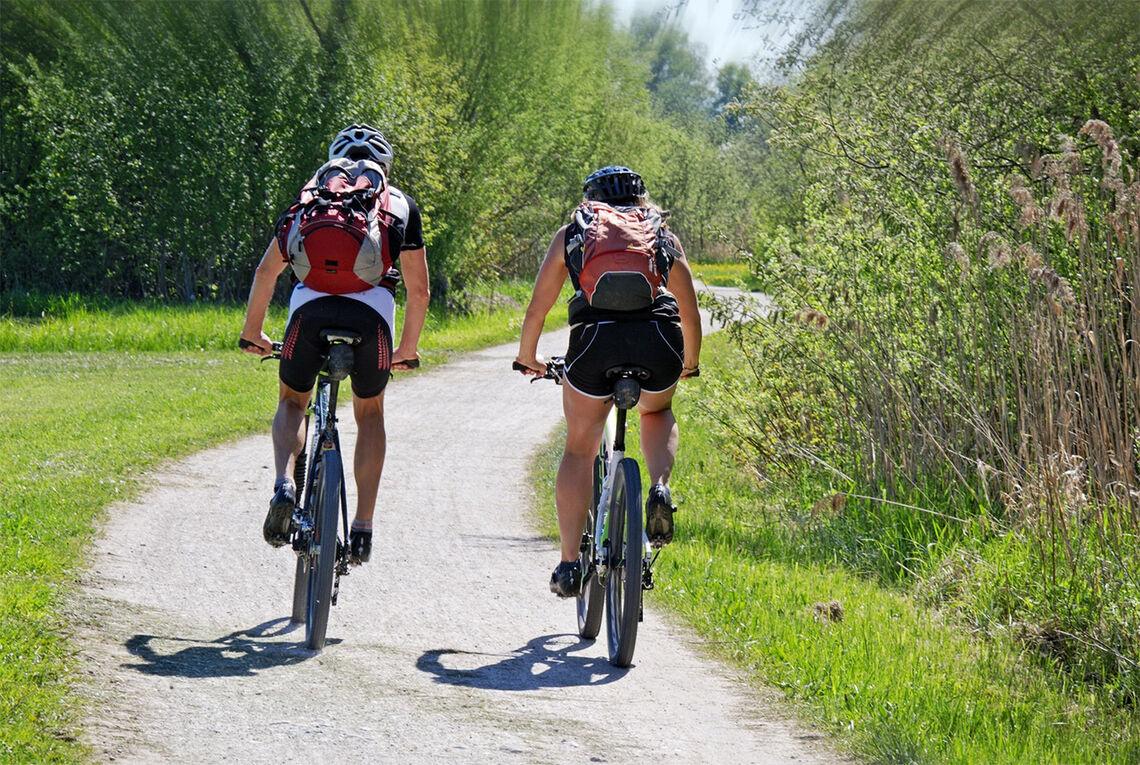 Det gjelder å finne et sykkelsete som passer sin anatomi og sin bruk. (Foto: Manfred Antranias Zimmer, Pixabay)