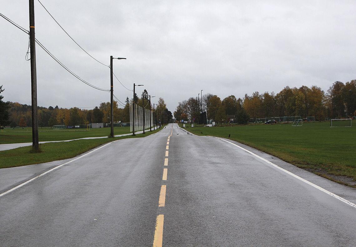 Veien kan se lang ut, men har man gjort grunnarbeidet, kommer man i mål. (Foto: Cristina Pulido Ulvang)