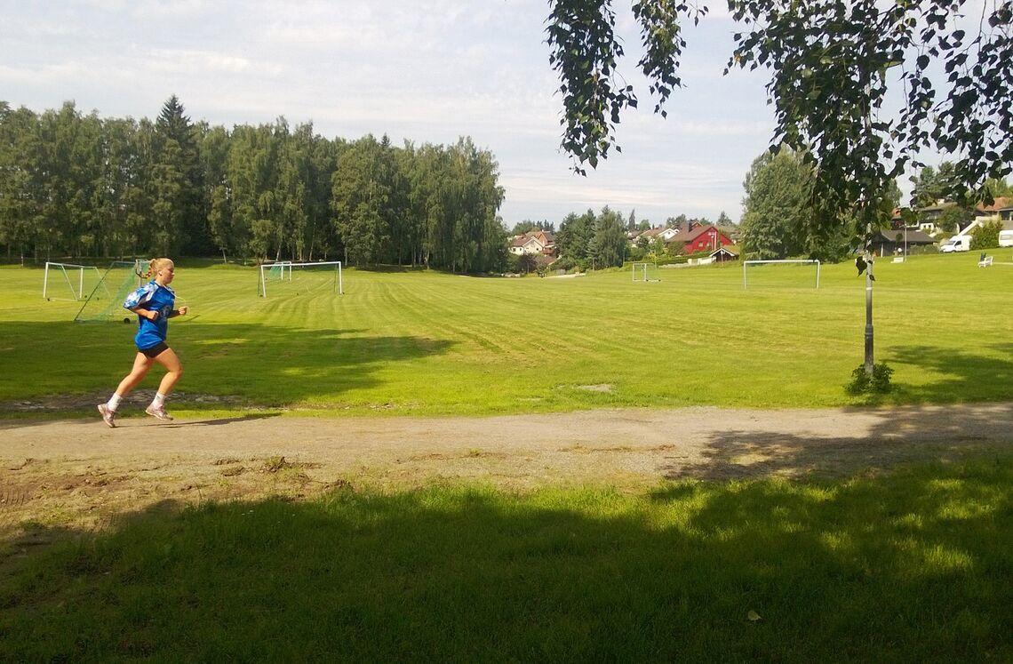 Det finnes fantastiske områder for alle typer løping i Hamar og nærområdet. Her fra Ankerskogen hvor første økt vil foregå. (Foto: Hamar kommune)