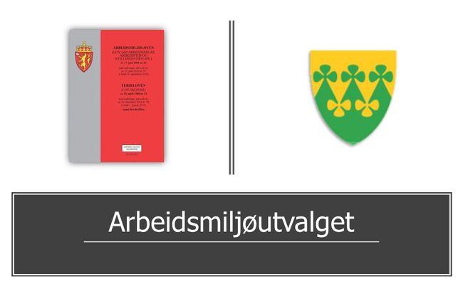 Arbeidsmiløjutvalget - Rakkestad kommune.jpg Bokfoto: Cappelen Damm Akademisk