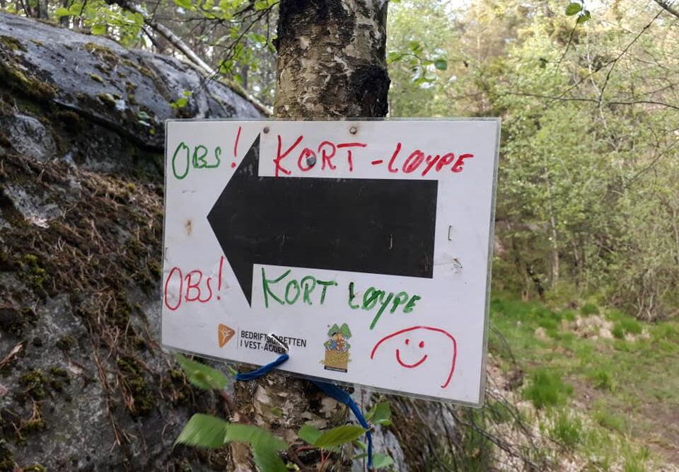 Løypene i Terrengkarusellen er godt merket hele veien! Foto: Guro Sæterlid