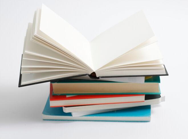 2251091-book
