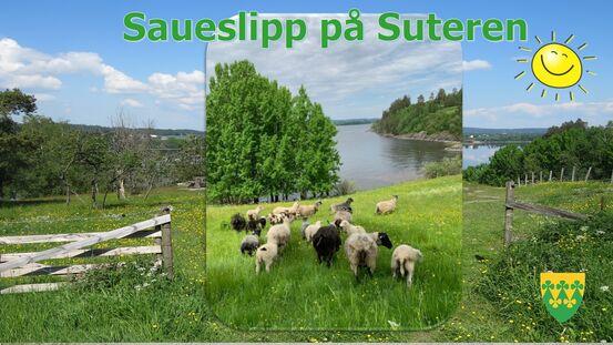 Saueslipp  - Suteren Friluftsområdet - Rakkestad kommune
