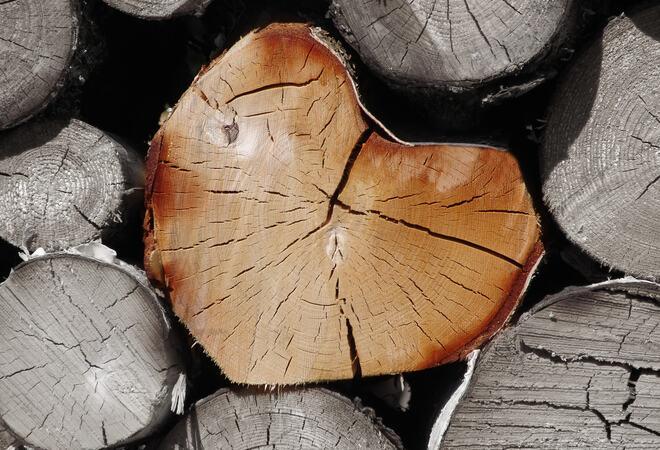 Stablede tømmerstokker, hvor den i midten er hjerteformet.