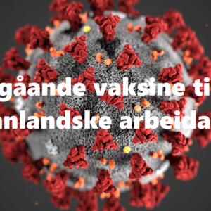 koronavirus-tema21 vaksine til utanlandske arbeidarar