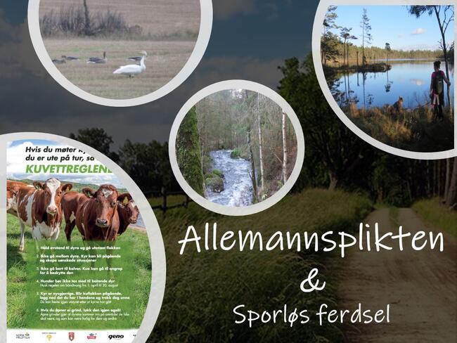 Allemannsplikten - Sporløs i naturen vår - Rakkestad kommune