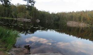 Grytelandstjernet- badeområdet - Rakkestad kommune