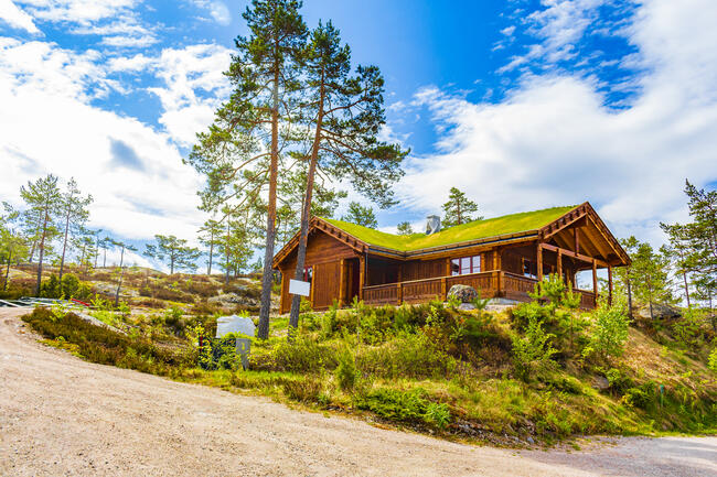 Norwegian wooden cabins cottages in the nature landscape Nissedal Norway.