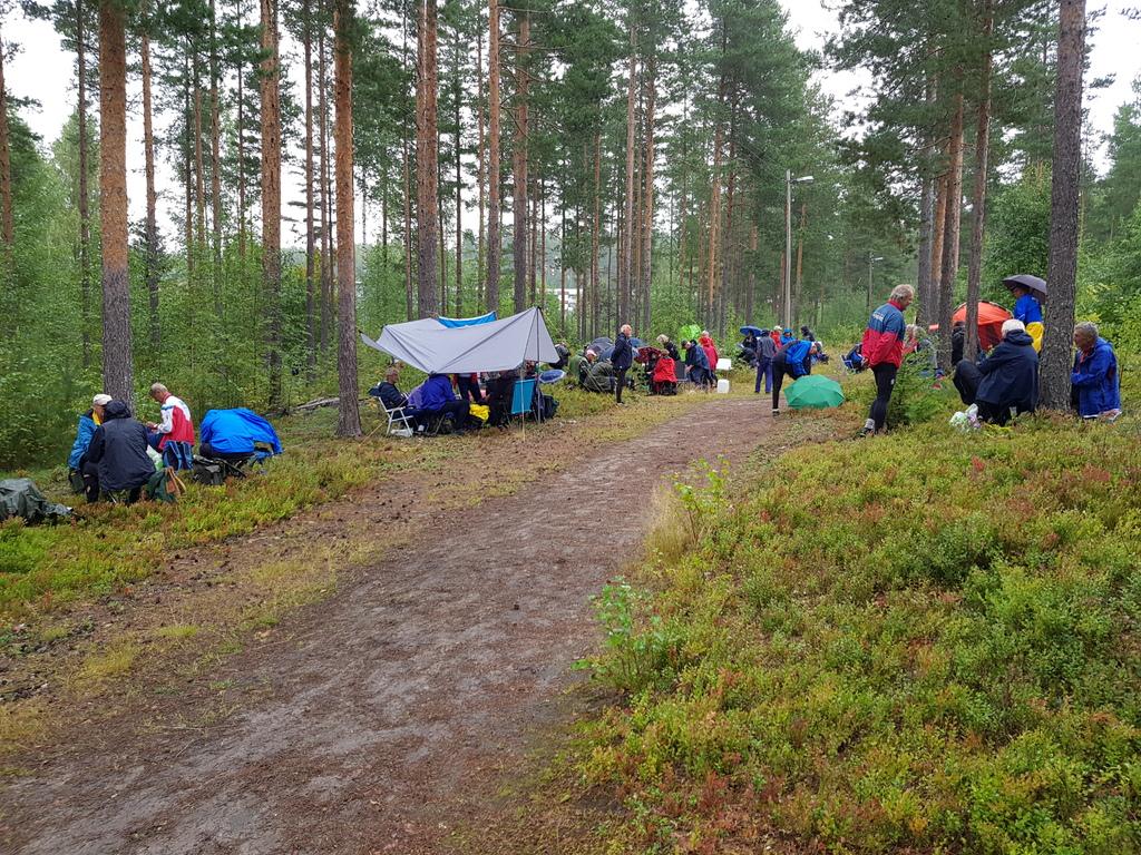 Samlingsplass i skogen i duskregn.jpg