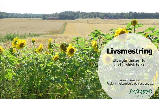 Livsmestring - Utvalgte temaer for god psykisk helse - Psykisk helse - og rustjeneste - Rakkestad kommune
