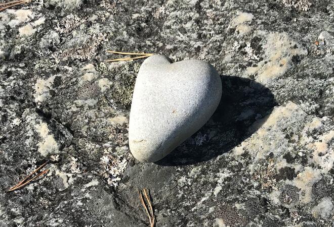 Hjertestein på stein